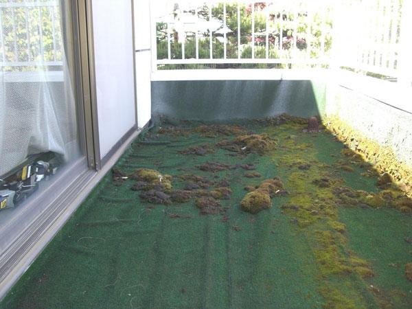 リフォーム前 。ベランダにはシート防水が施され、その上には人工芝が敷いてあり、さらにその上には苔が一面に生えていました。